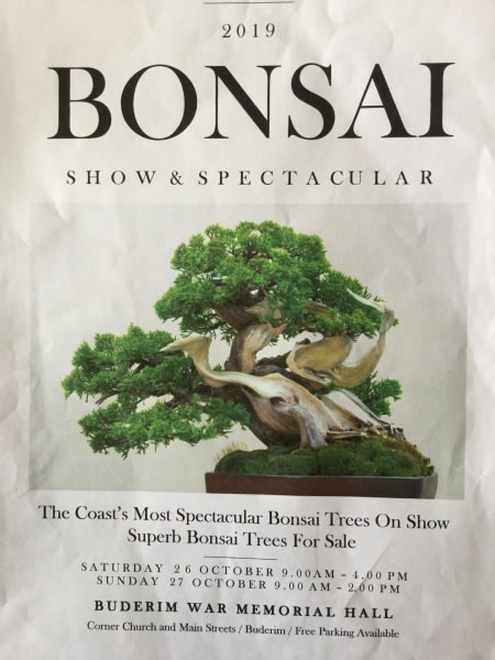 Bonsai Society Annual Show